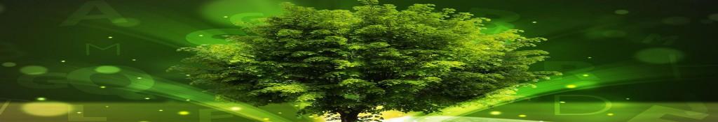 drzewko stopka